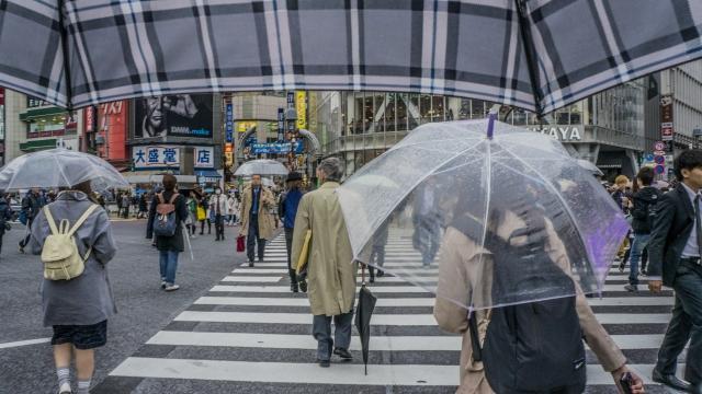 他人の振り見て・・・傘の持ち方一つで気配りが分かる